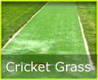 Cricket Grass Tasmania